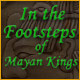 In the Footsteps of Mayan Kings
